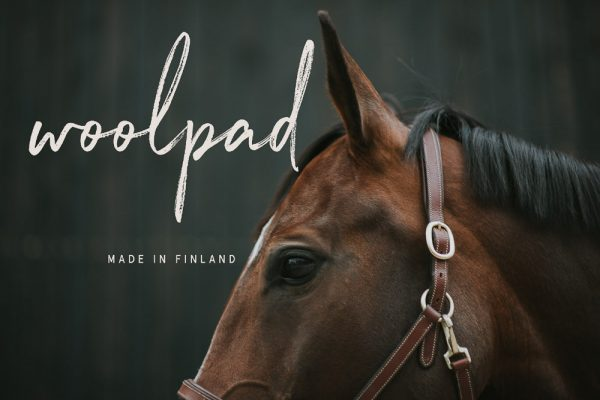 produkt_woolpad_mit_pferd