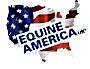 Equine American